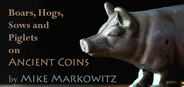 Pigs on Ancient Coins - CoinWeek Ancient Coin Series by Mike Markowitz