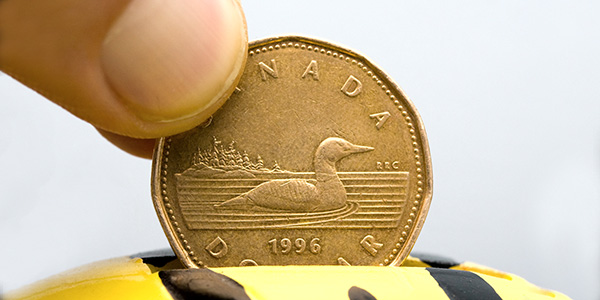 Canadian Loonie $1 coin