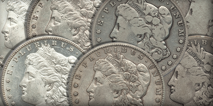 1879-CC Morgan Dollar Grading Set
