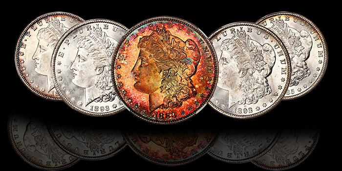 David Lawrence Rare Coins Morgan Dollars