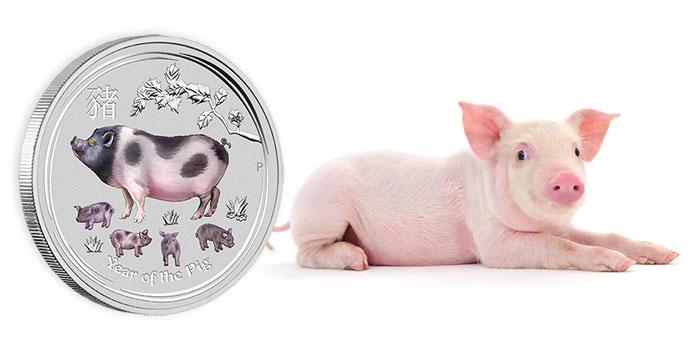 Perth Mint Coin Profiles - Australia 2019 Year of the Pig Lunar