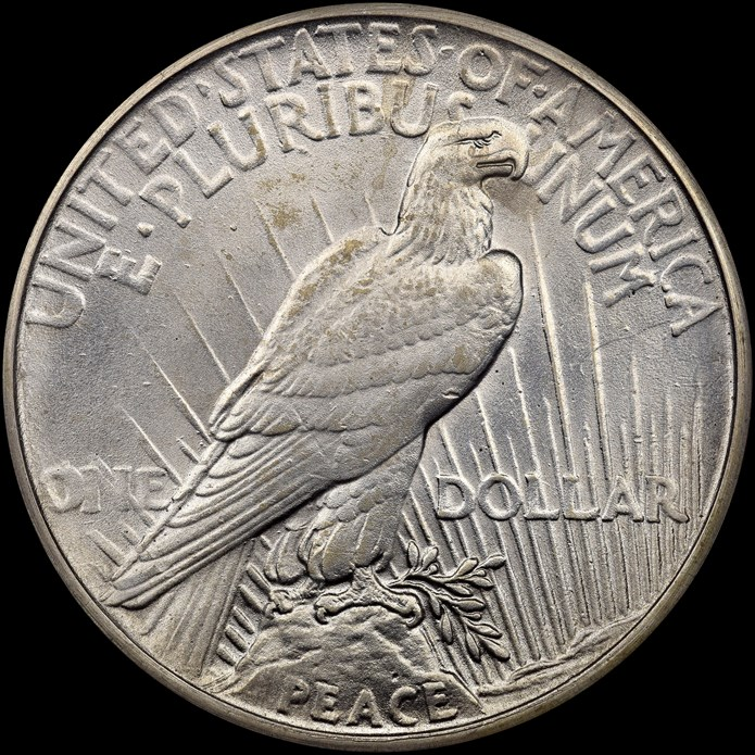 Reverse, counterfeit 1928 Peace Dollar. Images courtesy NGC