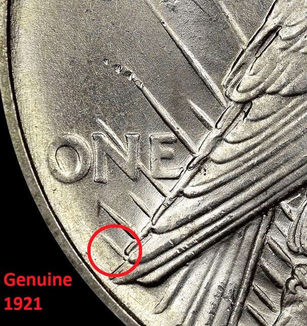Feathers on reverse of Genuine 1921 Peace Dollar. Image courtesy NGC
