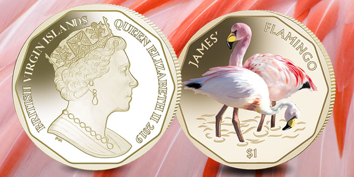James' Flamingo - $1 - Pobjoy Mint