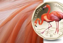 Greater Flamingo coin from Pobjoy Mint