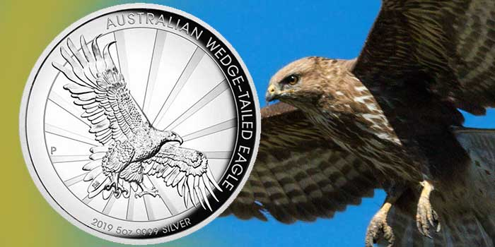 Australia 2019 Wedge-Tailed Eagle 5oz Silver Proof High Relief Coin