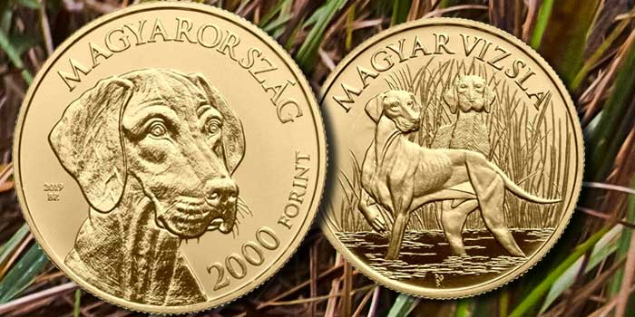 Popular Hunting Dog Breed Vizsla Focus of New Coin From Hungary