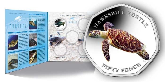 Second Coin in New Turtle Series Features the Hawksbill