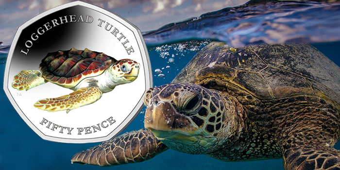 Next to Last Coin in Pobjoy Mint Turtle Series Now Available