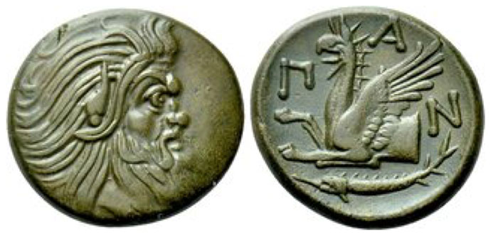 Pantikapaion. Ae (Circa 310-304/3 BCE). Obv: Bearded head of satyr right. Rev: Π - Α - Ν. Forepart of griffin left; below, sturgeon left. Anokhin 1023; MacDonald 69; HGC 7, 113. 7.44 g. 22 mm.
