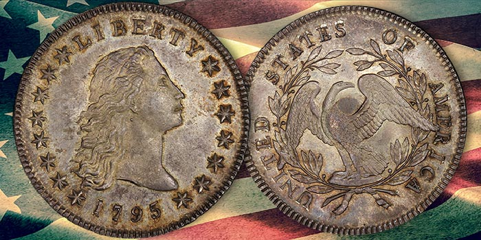 1795 Flowing Hair Dollar with Silver Plug