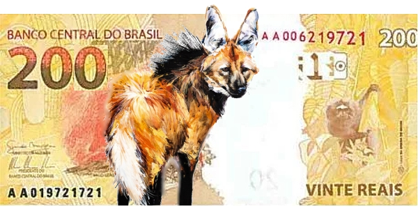 World Banknote - Brazil 200 Real