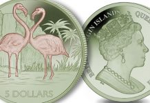 New Bi-Colored Titanium Coin Dedicated to the Flamingo - Pobjoy Mint
