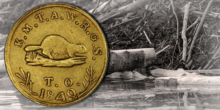 Oregon $5 Territorial Gold Beaver Coins