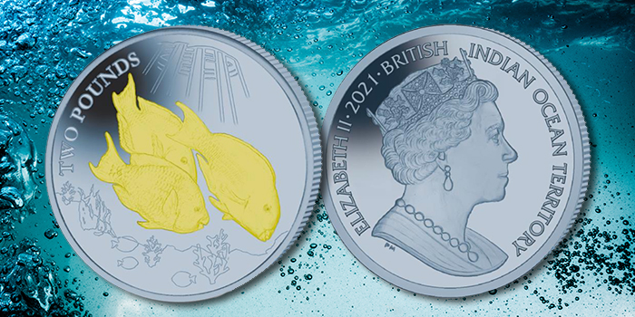 Bi-Color Green and Blue Titanium Coin Features the Parrotfish