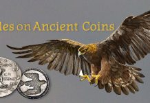 Eagles on Ancient Coins