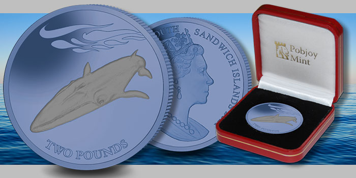 Fin Whale Features on New Bi-Color Titanium Coin